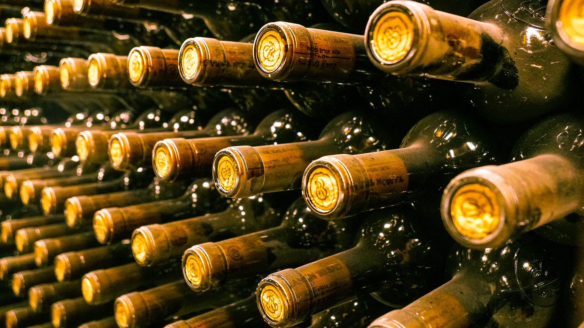 the most popular wines of dalmatia bottles